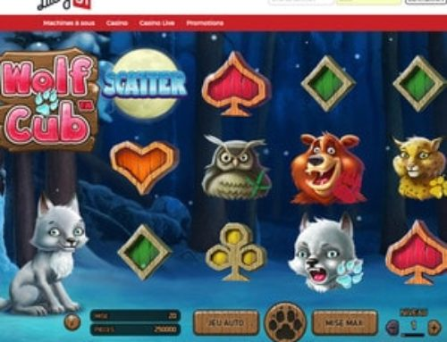La machine à sous Wolf Cub de NetEnt disponible sur Lucky31 Casino